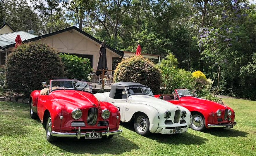 Jowett Jupiters in Australia summer 2018 meeting